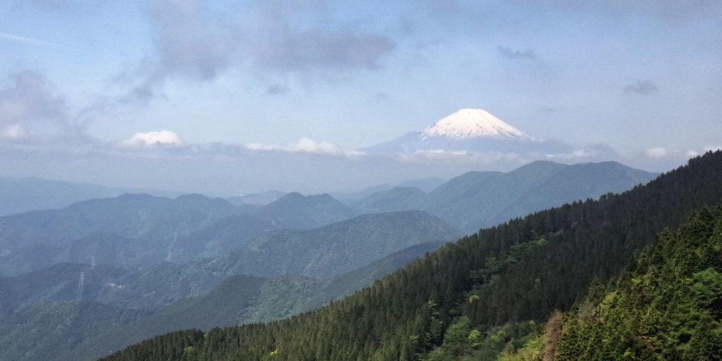 丹沢から見る富士山